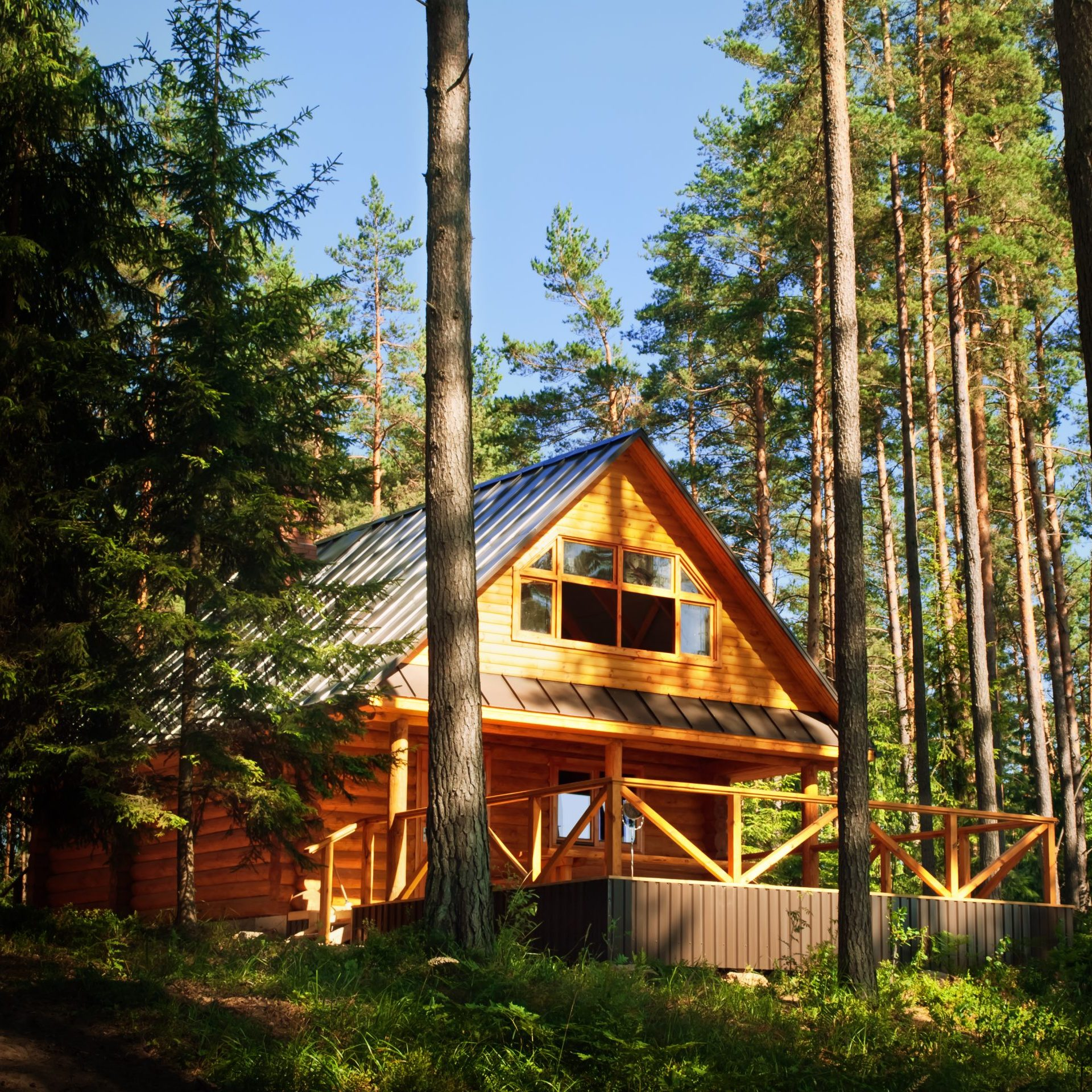 Wooden log House in the sunny forest