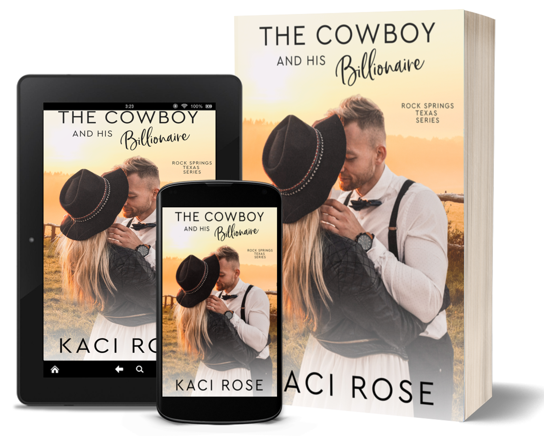 The Cowboy and His Billionaire - 3D Cover