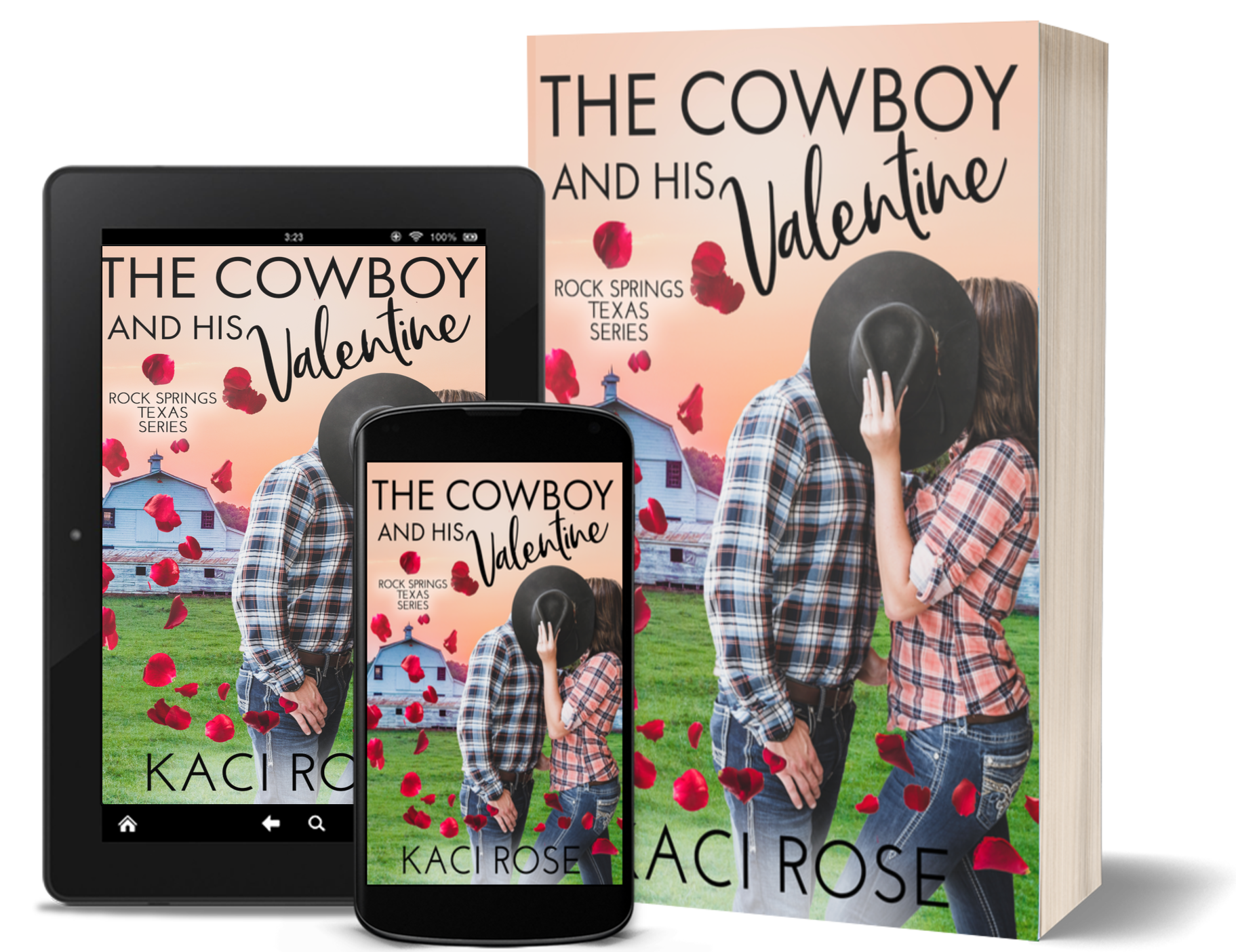 The Cowboy and his Valentine - 3D Covers